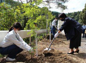 橋の両側に両町の町木であるもみじを植樹しています。